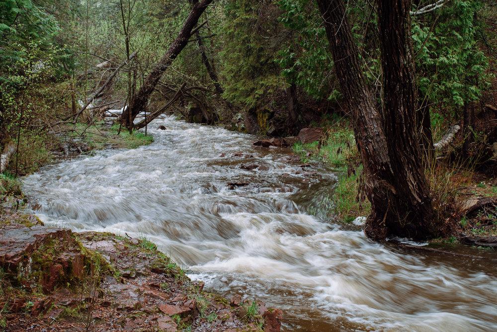 tischer-creek-5-21-2017-1609.jpg