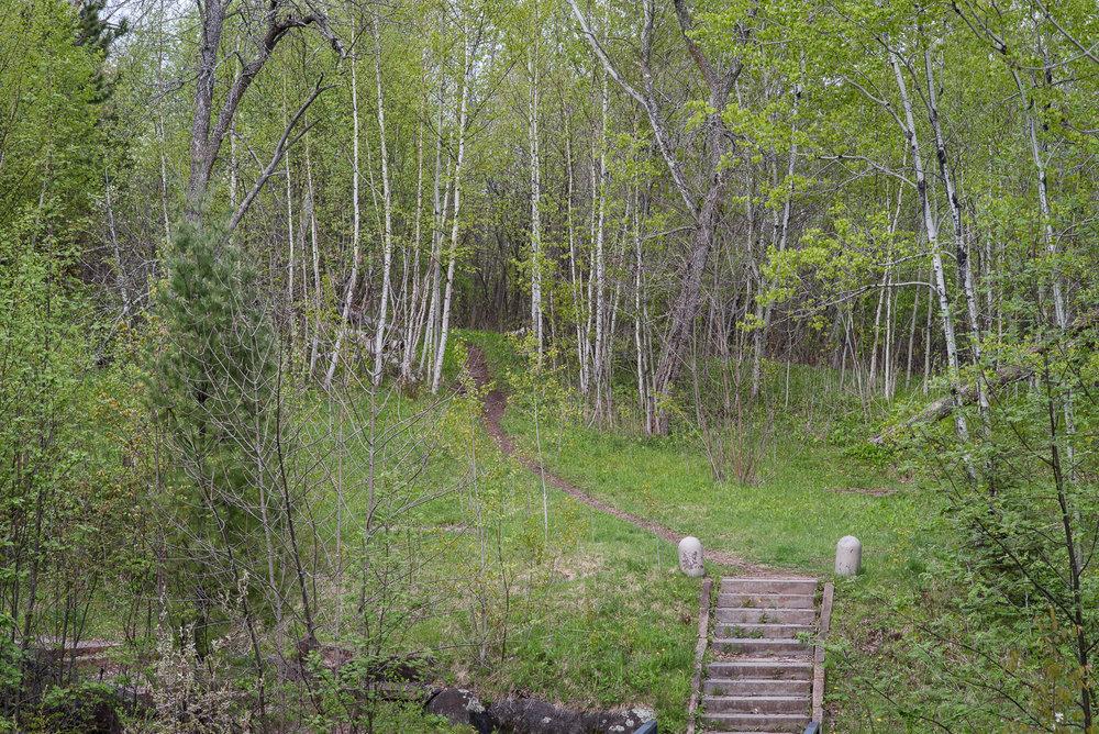 lincoln-park-5-22-2017-1690.jpg