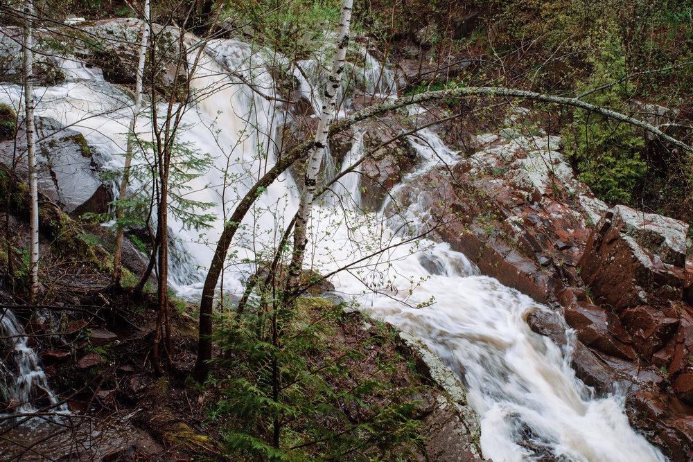 Tischer Creek 5-21-2017-1604.jpg