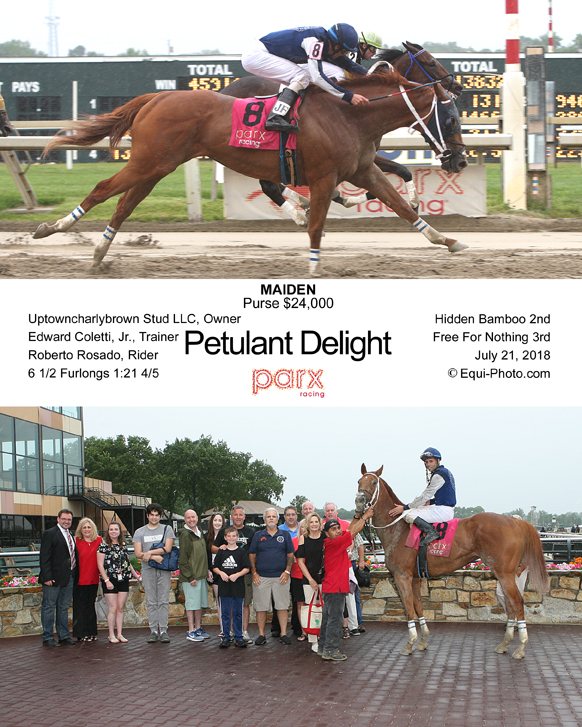 07-21-18 P 09 Petulant Delight COMP.jpg