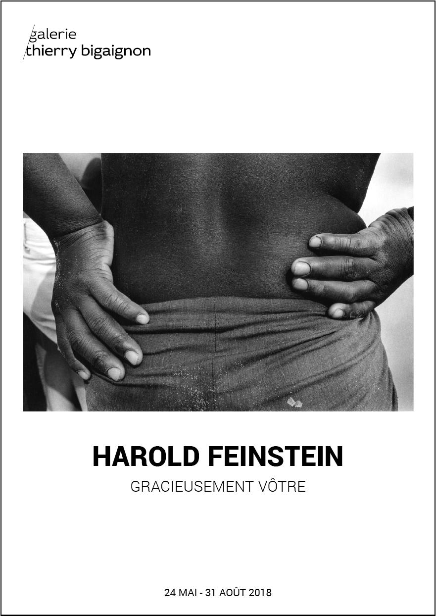 Harold Feinstein, Gracieusement Vôtre