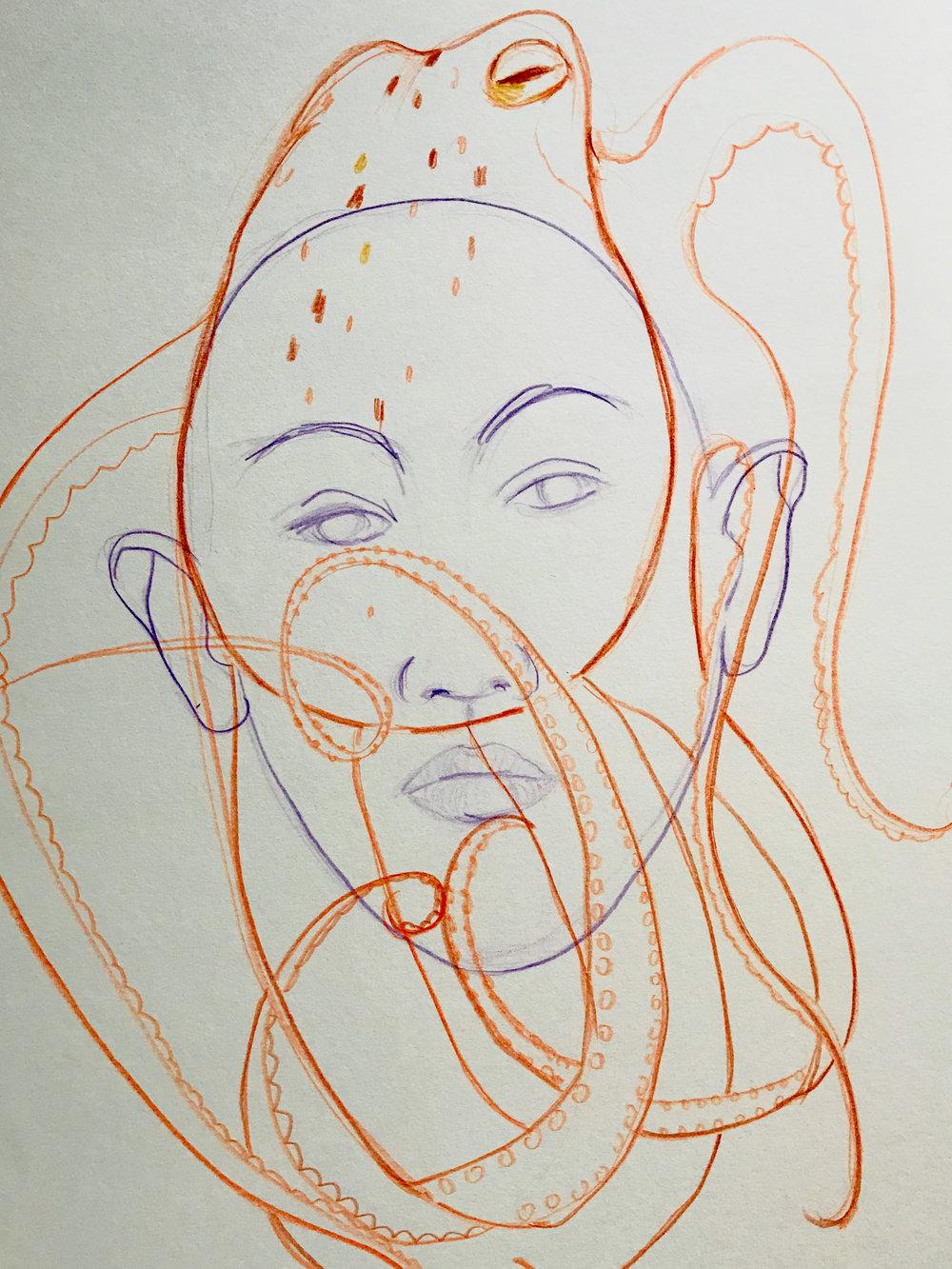 octopus aus der serie ANIMA(L)  Zeichnung auf Papier; 40x60 cm, 2013