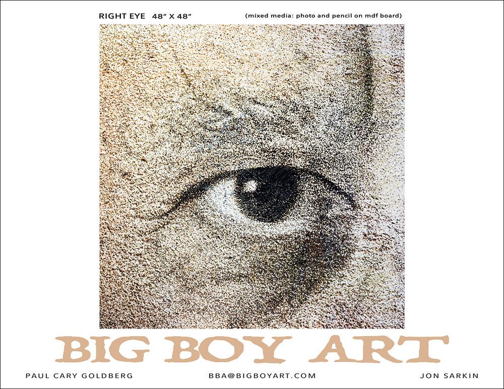 1. BIG BOY Right Eye.jpg