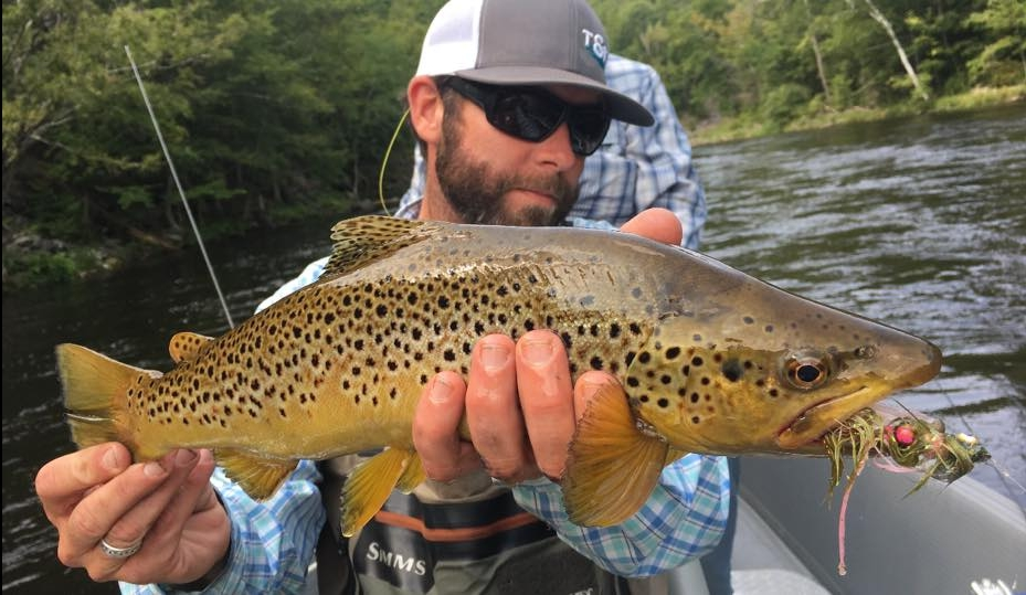 Pheasant Tail Tours fishing guide Brian Lynch with a nice Deerfield River brown trout.