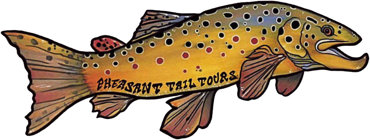 Pheasant Tail Tours - Guided drift boat fly fishing for trout - Deerfield RIver, Massachusetts