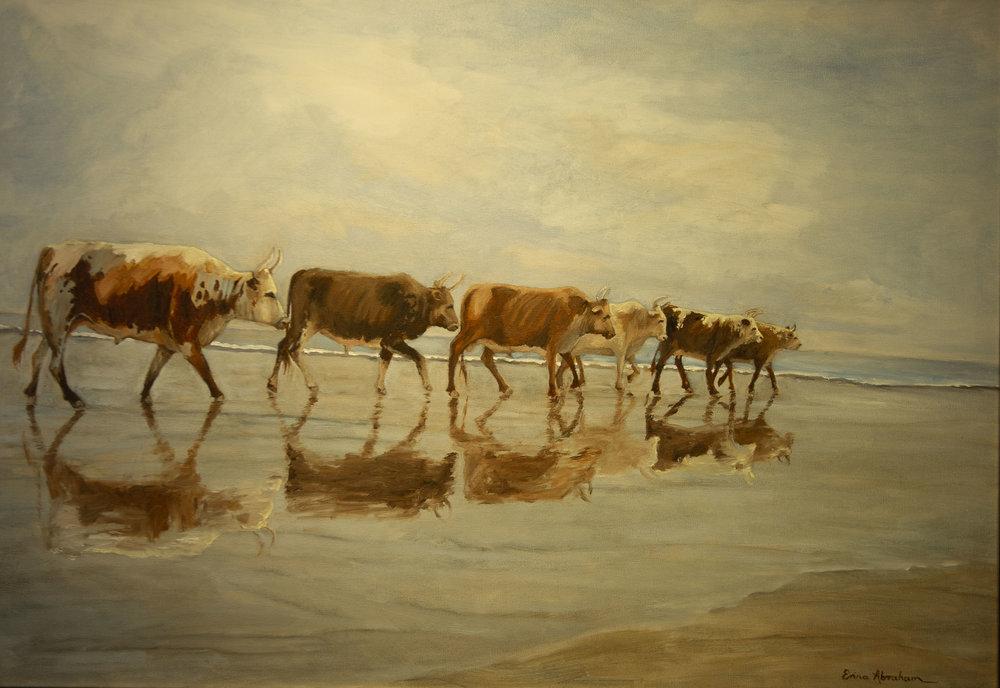 Kosi Baai, Zululand - Nguni reflections