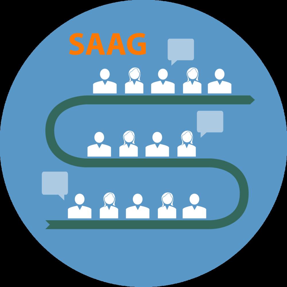 SAAG  Meeting.png