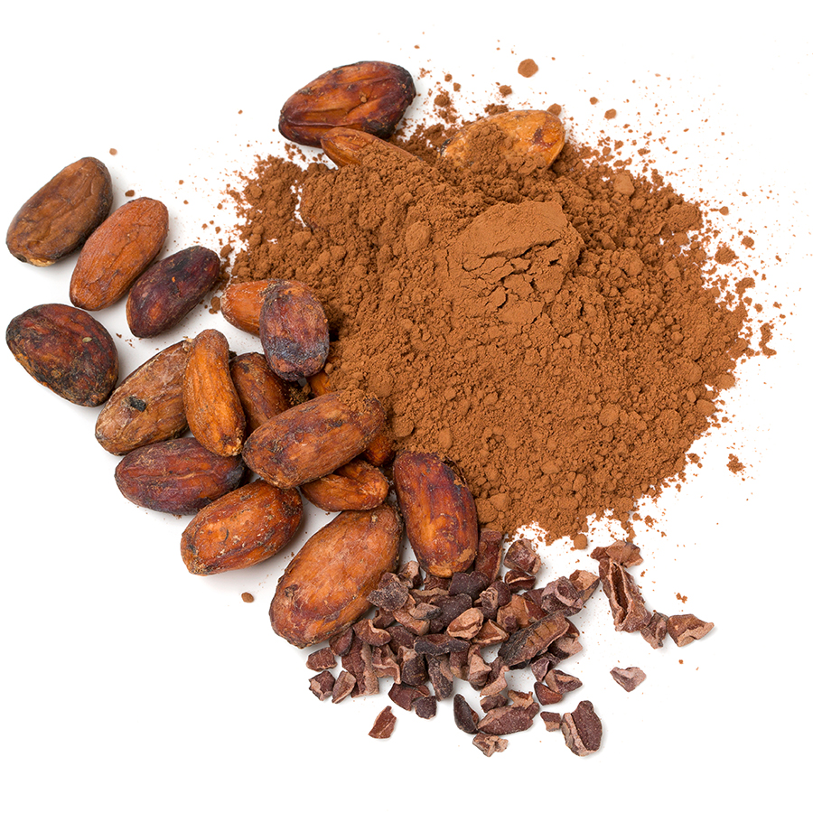Cocoa Beans Section.jpg