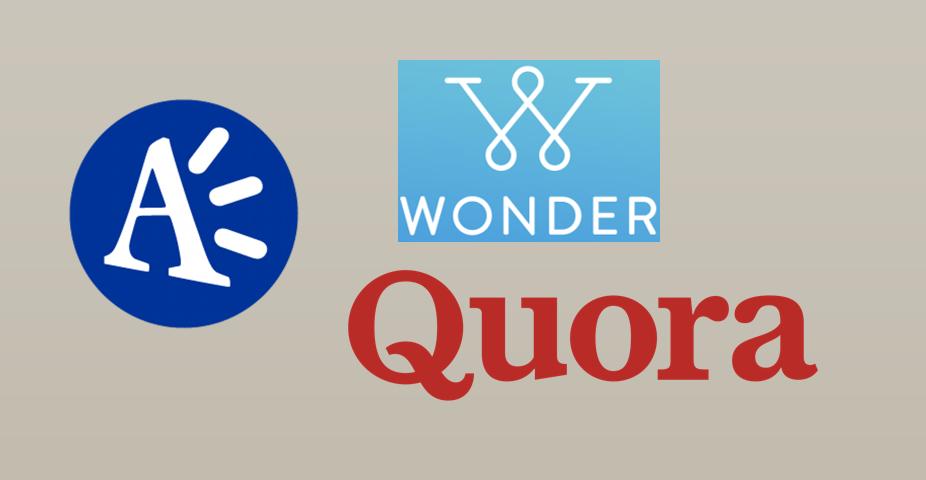 Alternative 2: Expert Q&A companies