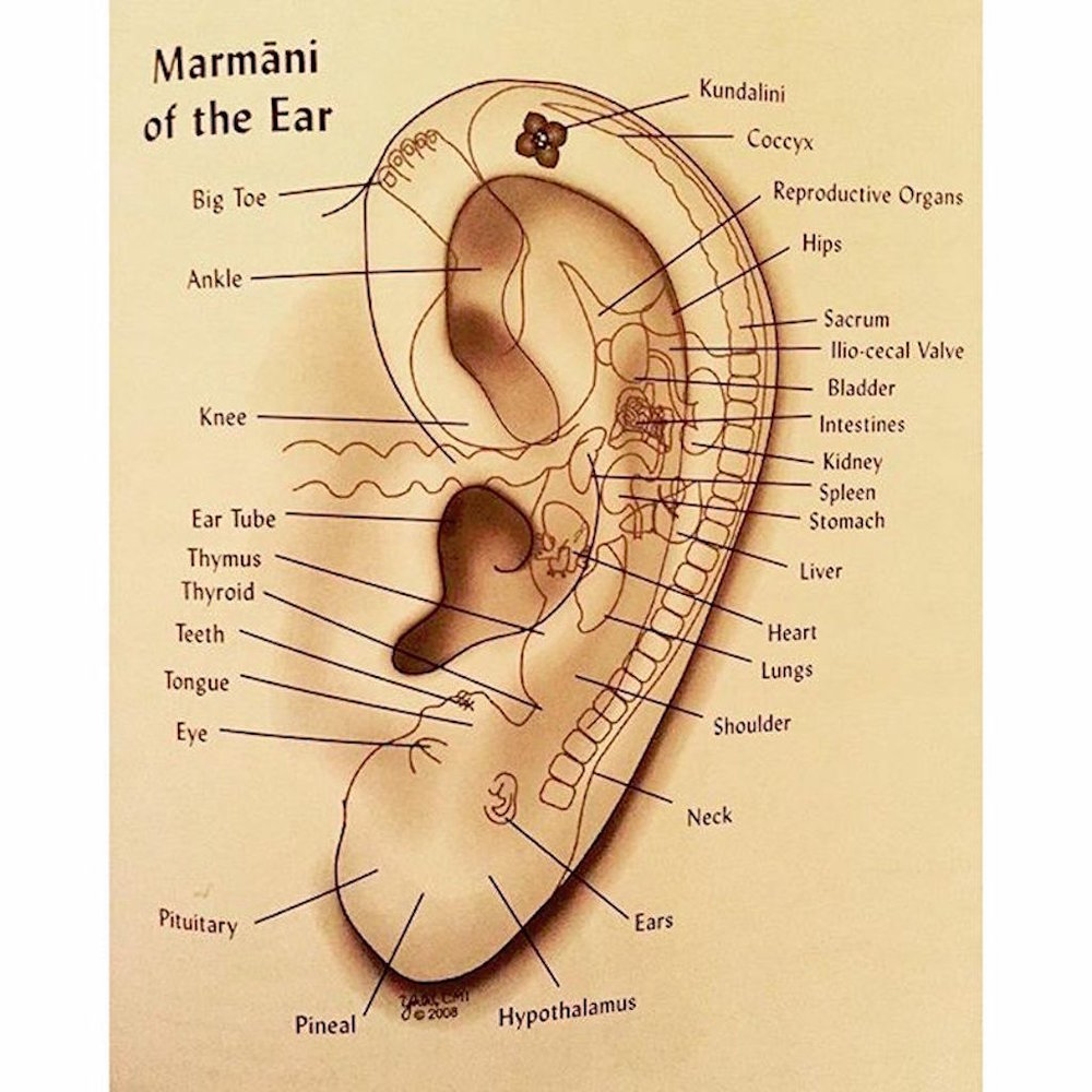 Ear Marmas.jpg