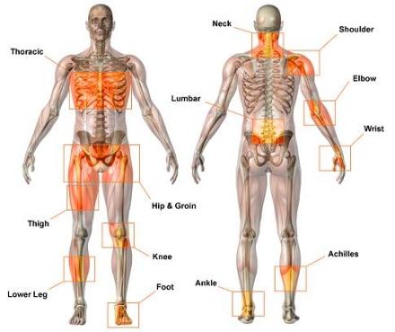Musculoskeletal Injuries.jpg