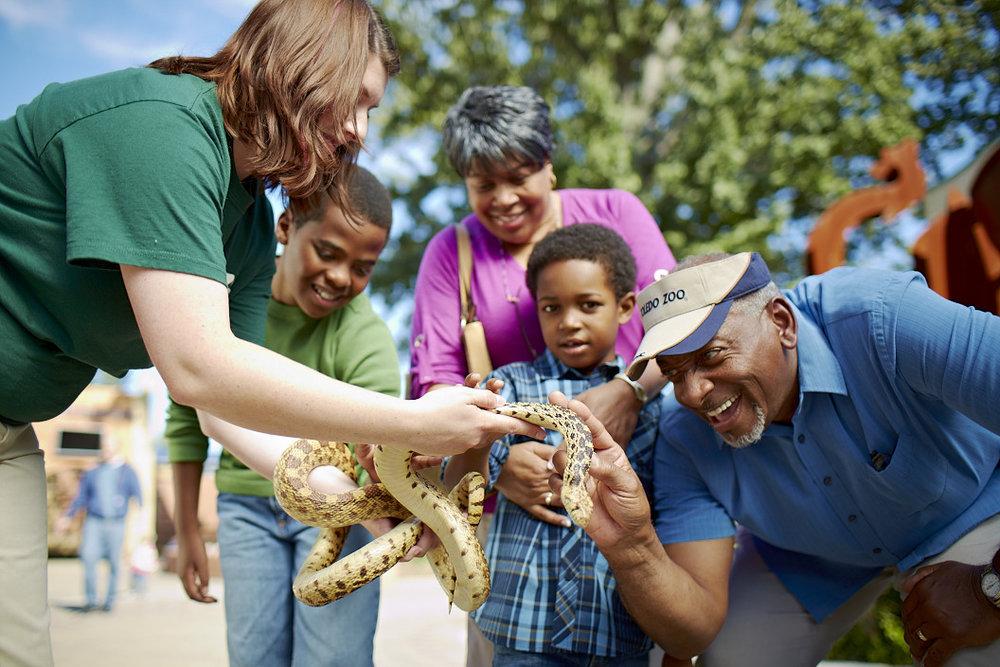 Senior Toledo Zoo Snake SummaCare 228.jpg