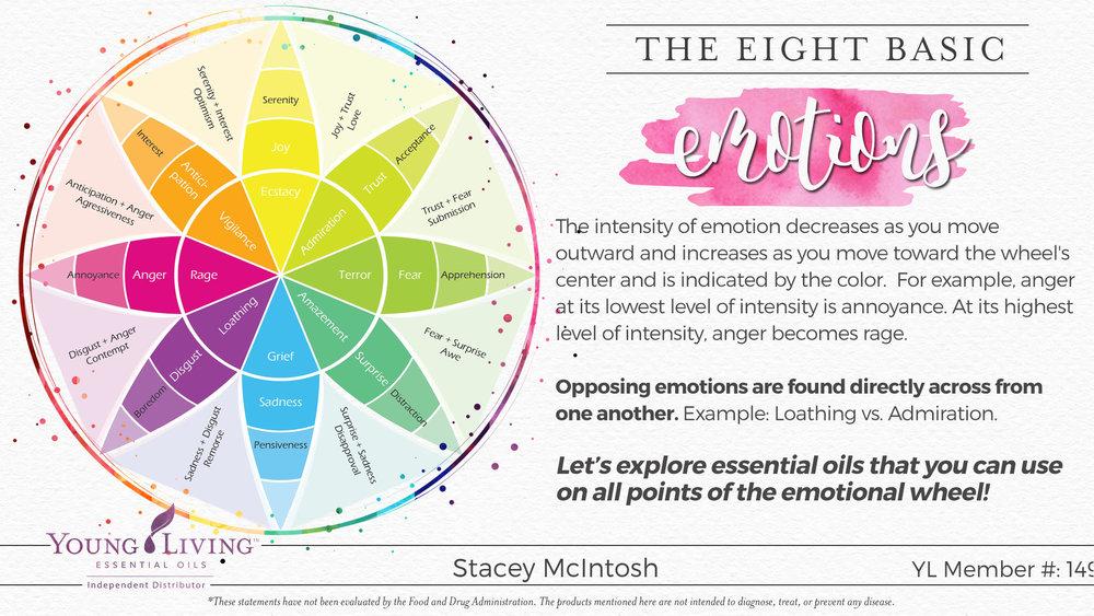 07-Eight-Basic-Emotions.jpg