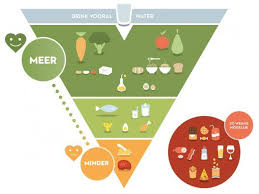 Sustainable Lifestyle Consultant - The new food pyramif by The Flemish Institute of Healthy Living.jpeg