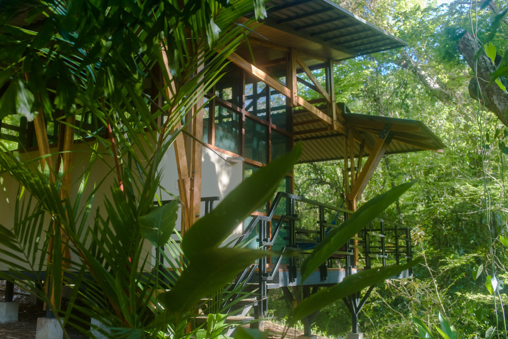 Sustainable Lifestyle Consultant - The Sanctury Costa Rica - Eco-frienldy Yoga in Costa Rica.jpg