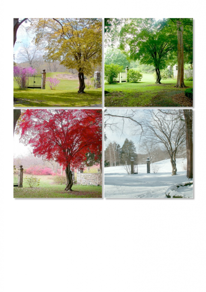 12God-Made-the-Seasons-lessonEng_014-724x1024.png