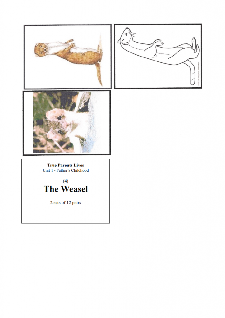 5.-The-Weasel-lesson_008-724x1024.png