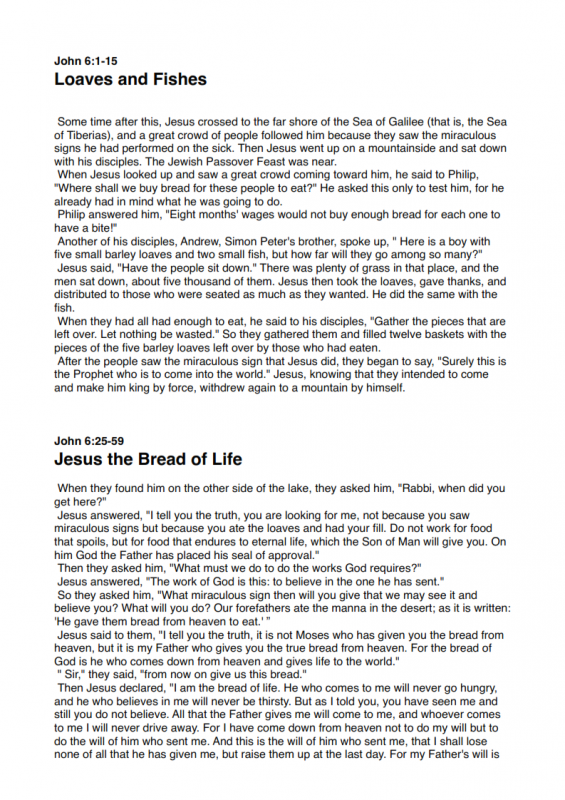 21.-Who-Was-Jesus-lessonEng_004-565x800.png