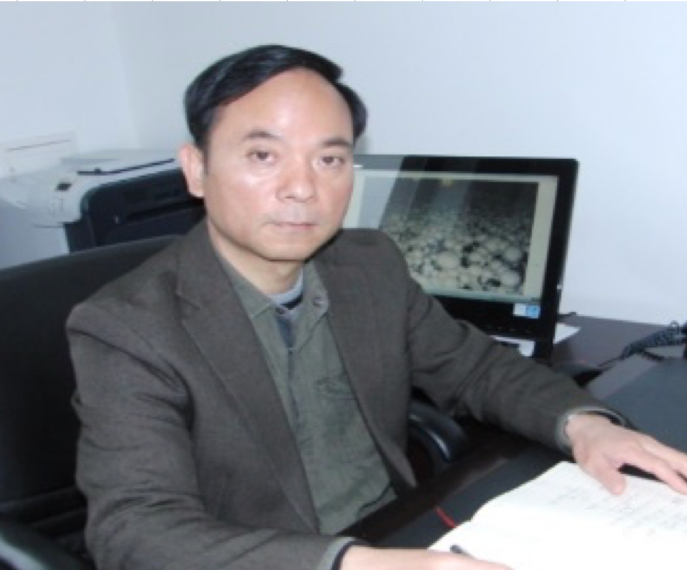 Shanghai Edible Fungi Factory Product Development   Prof. Jiachun Huang - Shanghai Academy of Agricultural Sciences
