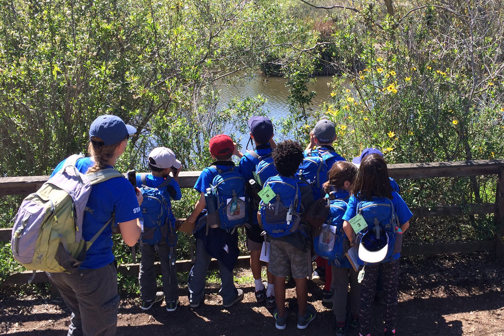 Group of campers observing Freshwater Marsh