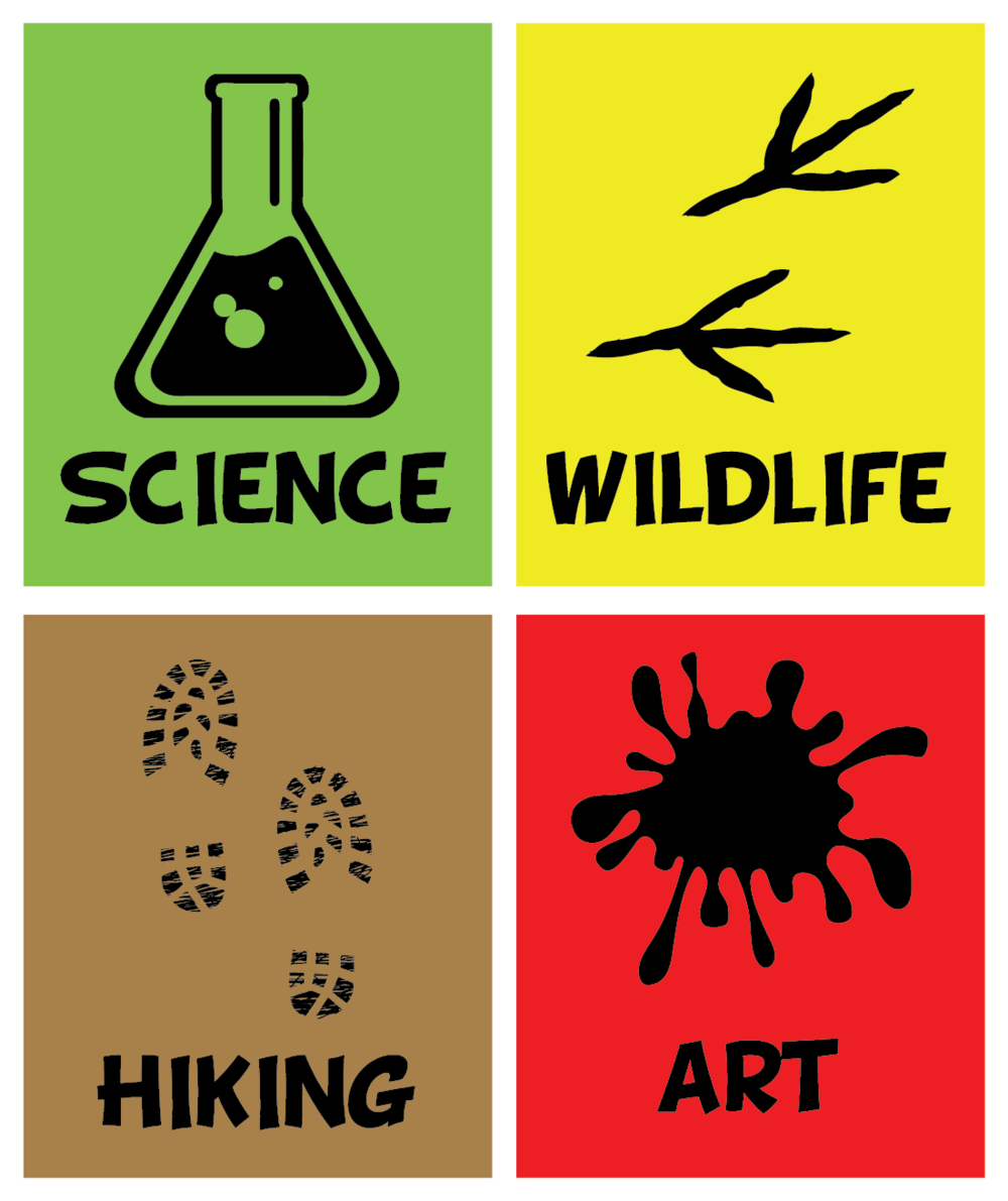 Ballona Discovery Nature Camp Logo