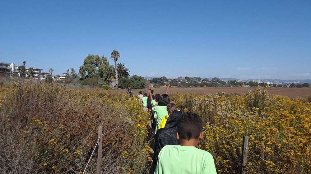 Students walking through Saltwater Marsh