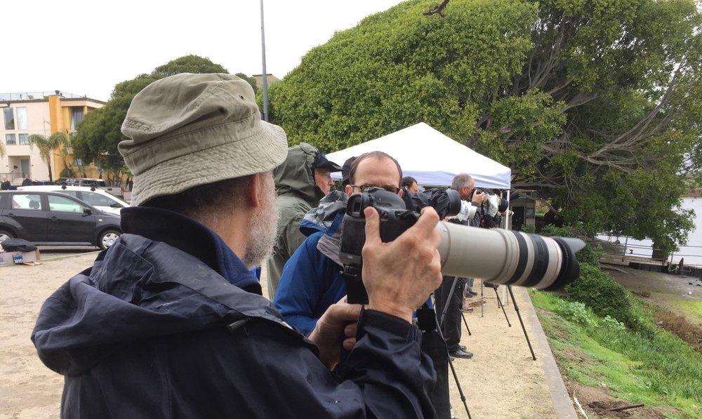 Volunteer Event Photographer