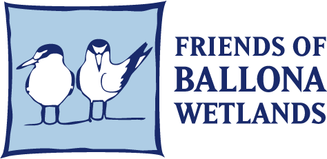 Friends of Ballona Wetlands