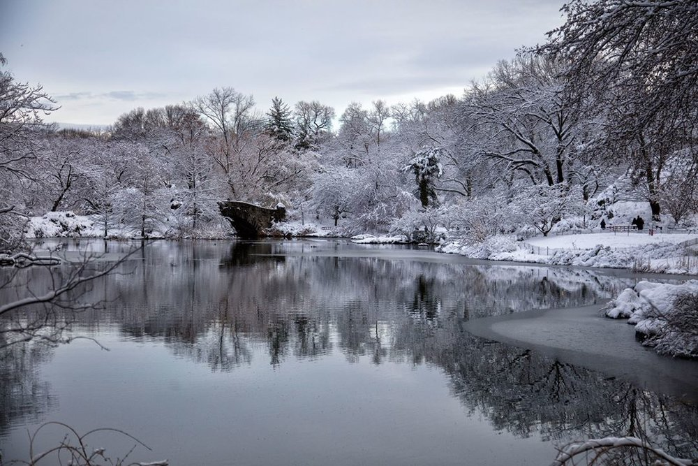 Spring snow at Central Park. Photo by Benny Zhang Studio.