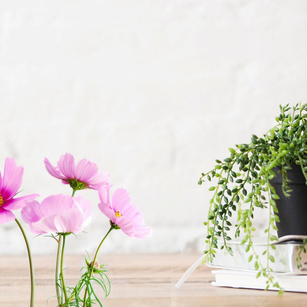 floral-plant-desk-2-1500.jpg