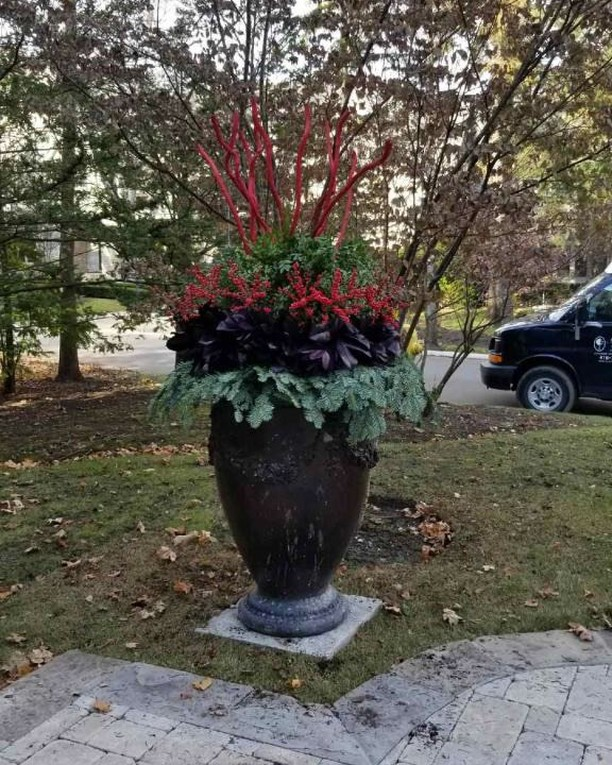 Happy December!!! #winterdecor  #floraldesign #container gardening