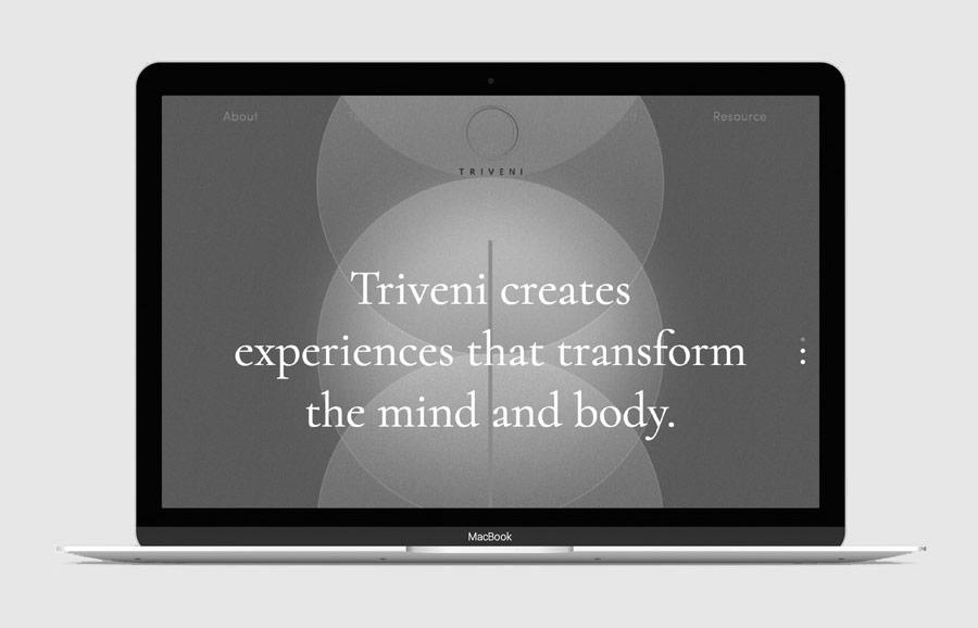 UME-Triveni-Strat-BW.jpg