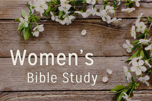 Women - This is a ministry for women and young women (13 & above). We meet the 2nd Sat. of each month from Sept.-June at 5PM.