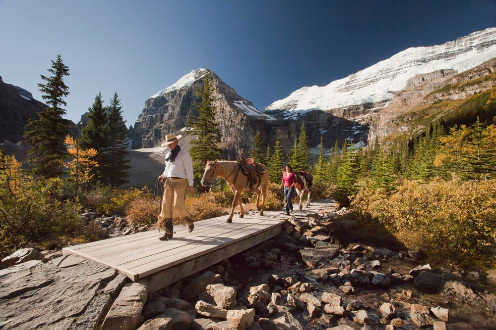 Horseback_Riding_Lake_Louise_Plain_Of_Six_Glaciers_Tea_House_Paul_Zizka_2_Horizontal1500x1000.jpg