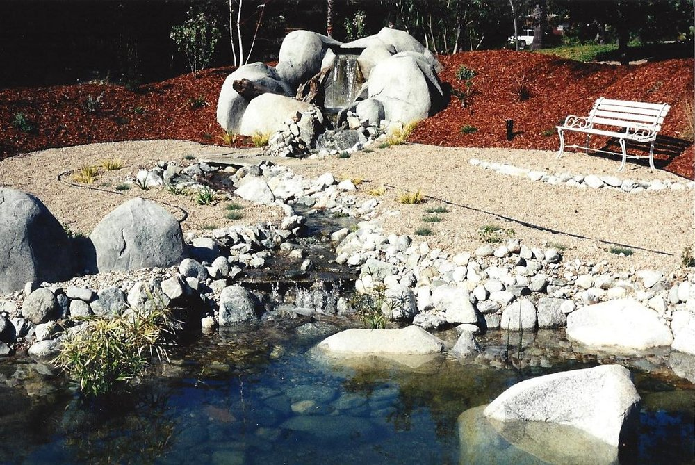 Faux, Bio pond, Gutzmer 2.jpg