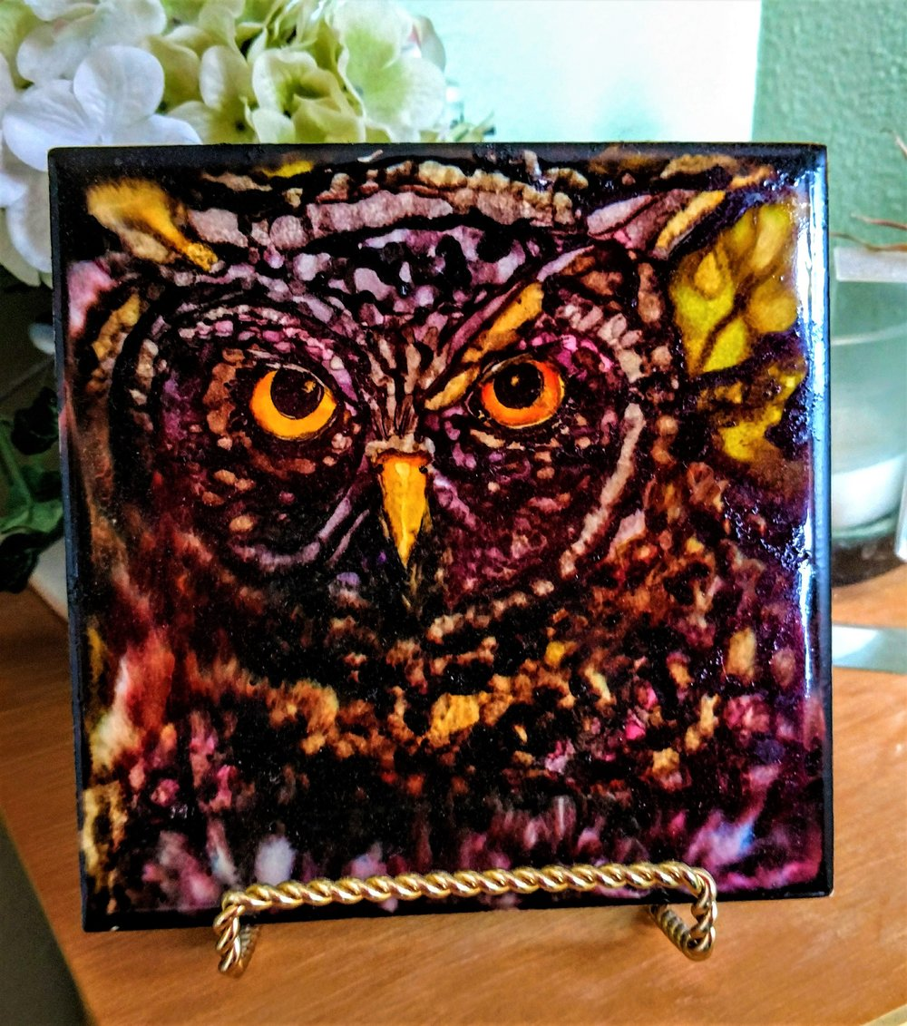 6x6 Hootie 4 Hour Workshop $45