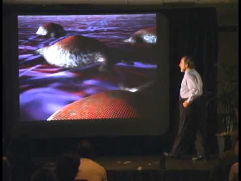 biology-of-belief-8211-by-bruce-lipton-full-documentary.jpg