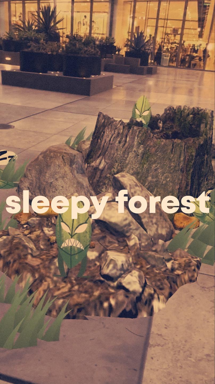 sleepyforets.jpg