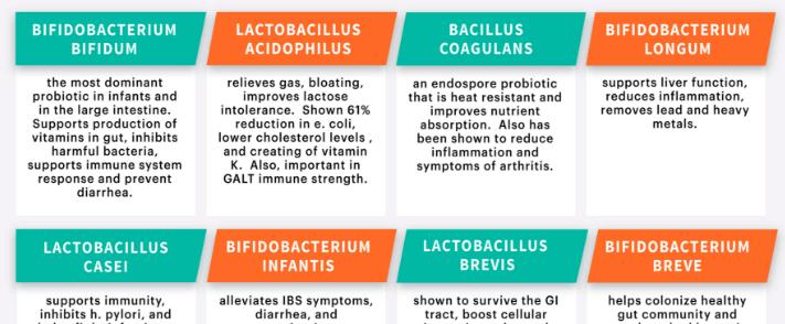 Beneficial Probiotic Strains