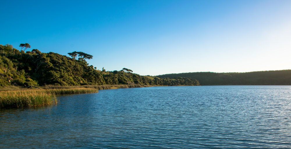 Lake Ototoa, South Head