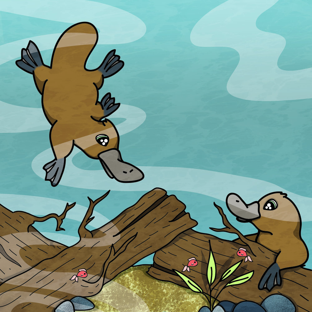 Platypus Page.jpg