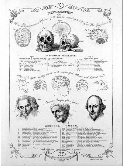 Phrenological diagrams 1818 / Wellcome Images