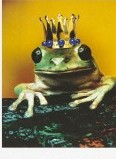 King Frog / Wellcome Images