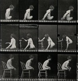 Americans / Wellcome Images