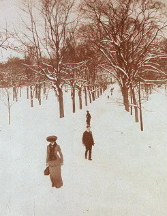 Boston Common 1904 / Library of Congress