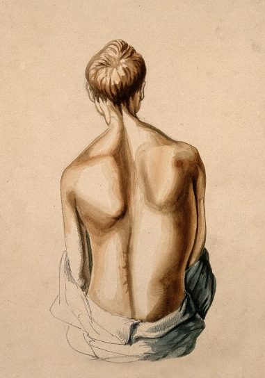 Back / Wellcome Images