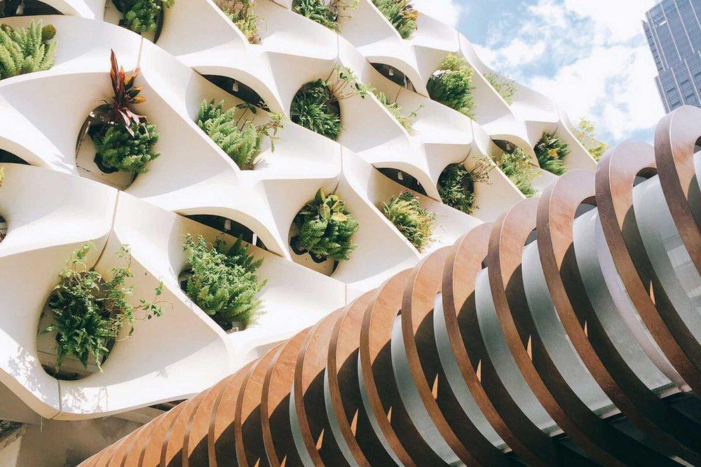 Urban-Redevelopment-Garden.jpg