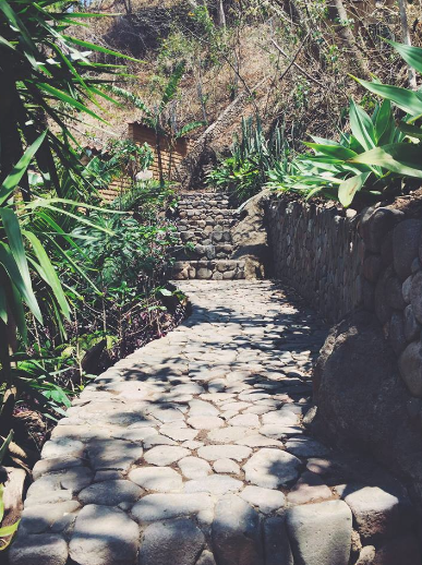 stairs with green trees laguna lodge eco resort guatemala lake atitlan travel tips travel blogger vlogger influencer carla maria bruno.png