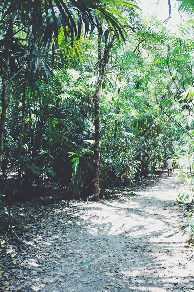 jungle tikal flores guatemala mayan tours mayan ruins backpacking carla maria bruno travel blogger vlogger influencer.jpg
