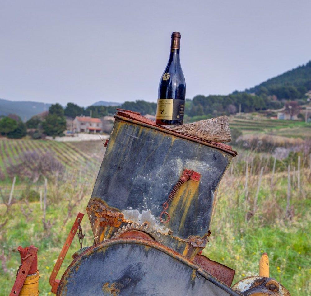 Vin bio depuis 1893 ! -